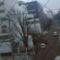 知人の北海道滞在記(4)