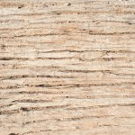 Bark Wood Texture for Background